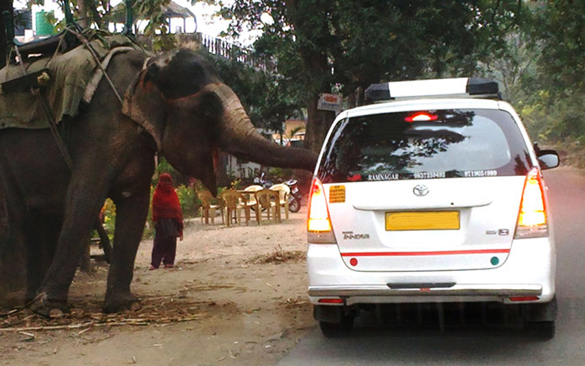 Corbett National Park Taxi