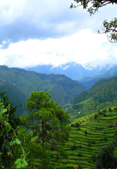 Nainital Ranikhet Kausani Tour Packages